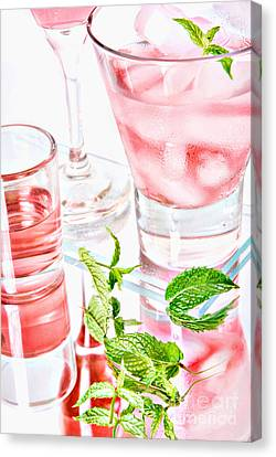 Pink Cocktails Canvas Print by HD Connelly
