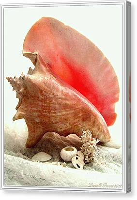 Pink Cong Shell Canvas Print