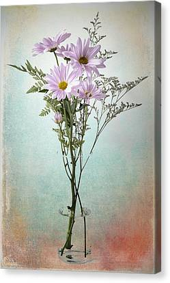 Pink Daisy Canvas Print by James Bethanis