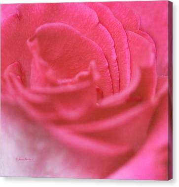Canvas Print featuring the photograph Pink Edges by Joan Bertucci