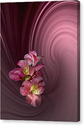 Canvas Print featuring the photograph Pink Fantasy by Judy  Johnson