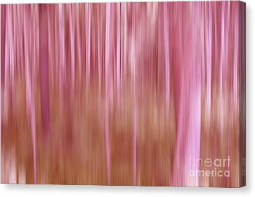 Pink Forest Canvas Print