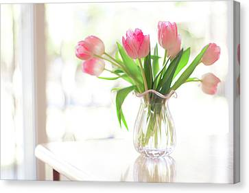 Pink Glass Vase Of Pink Tulips In Window Canvas Print by Jessica Holden Photography