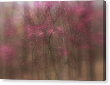 Canvas Print featuring the photograph Pink Haze by Coby Cooper