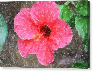Canvas Print featuring the photograph Pink Hibiscus by Donna  Smith