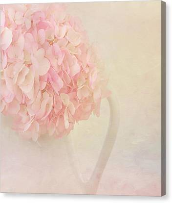 Pink Hydrangea Flowers In White Vase Canvas Print by Kim Hojnacki