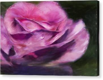 Pink Canvas Print by Jack Zulli