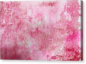 Pink Lady Canvas Print by Christopher Gaston