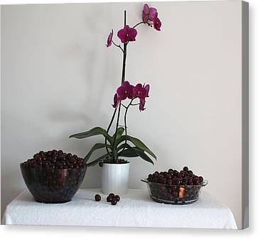 Pink Phalaenopsis Orchid And Sour Cherries Canvas Print by Georgeta  Blanaru