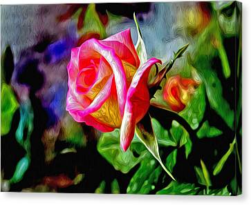 Abstact Landscapes Canvas Print - Pink Rose by James Steele