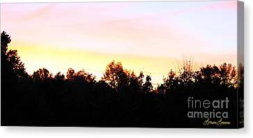 Pink Skies Canvas Print by Lorraine Louwerse