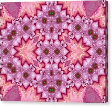 Pink Splash Mandala Abstract Canvas Print by Georgiana Romanovna