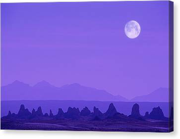 Pinnacles In Nevada, Usa Canvas Print by Grant Faint
