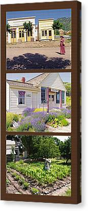Pioneer Series Triptych Canvas Print by Steve Ohlsen