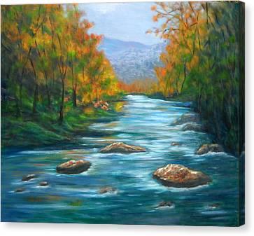 Pisgah Forest 1 Canvas Print by Sandy Hemmer