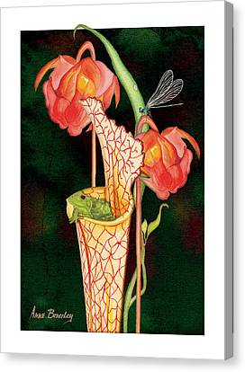 Canvas Print featuring the painting Pitcher Plant With Blooms by Anne Beverley-Stamps