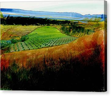 Plain De Rousette Canvas Print by David Bates