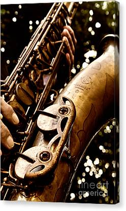 Play For Me Canvas Print by Lisa Williams
