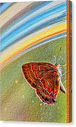 Playroom Butterfly Canvas Print