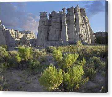 Plaza Blanca Near Abiquiu New Mexico Canvas Print by Tim Fitzharris