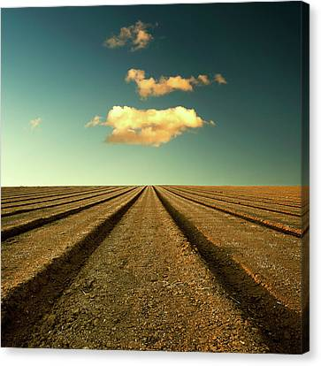 Plowed Fields Canvas Print - Ploughed Field And Sky by Paul McGee