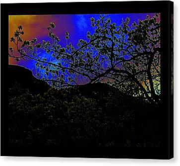 Canvas Print featuring the photograph Plum Grove At Dusk by Susanne Still