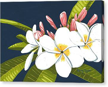 Canvas Print featuring the painting Plumeria by Terry Taylor