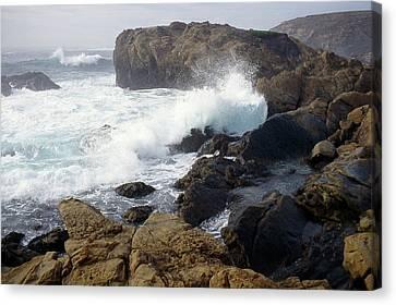 Point Lobos Whale Rock Canvas Print