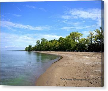 Point Pelee Beach Canvas Print