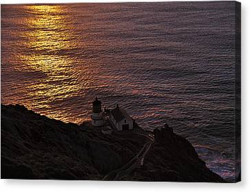 D700 Canvas Print - Point Reyes Lighthouse Sunset by Richard Leon