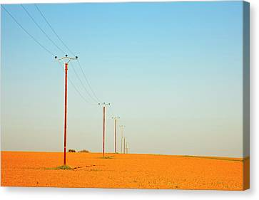 Poles In Field Canvas Print by Klaus W. Saue