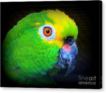 Polly Canvas Print