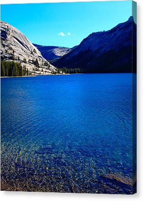 Polly Dome And Tenaya Lake Ca Canvas Print by Troy Montemayor