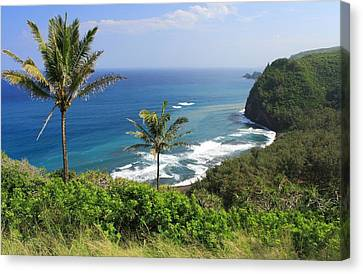 Canvas Print featuring the photograph Pololu Valley by Scott Rackers