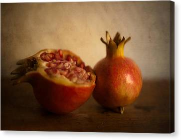Pomegranate Canvas Print by Alexandre Fundone
