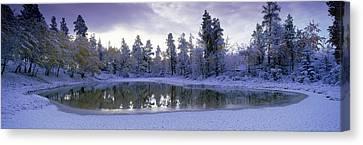 Pond And Fresh Snowfall, Near 70 Mile Canvas Print by David Nunuk