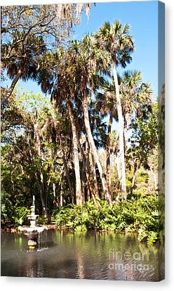 Pond And Palms Canvas Print by Bob and Nancy Kendrick