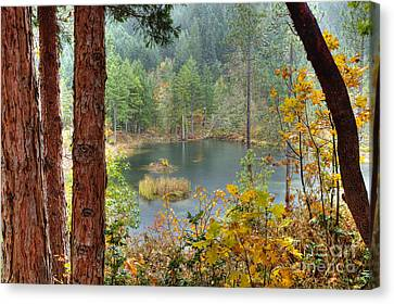Pond At Golden Or. Canvas Print by Jim Adams