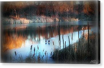 Canvas Print featuring the photograph Pond Creek by Michelle Frizzell-Thompson