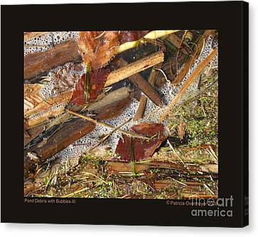 Pond Debris With Bubbles-iii Canvas Print by Patricia Overmoyer