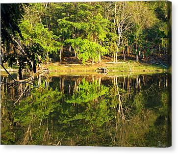 Pond Reflection Guatemala Canvas Print