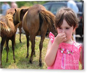 Ponies In Chincoteague Canvas Print by Julie VanDore
