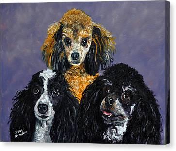 Poodles Canvas Print by Stan Hamilton