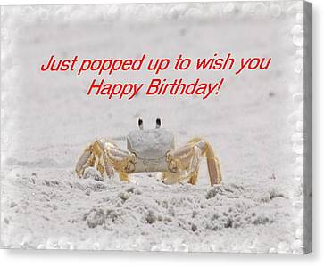 Popped In To Wish You Happy Birthday Canvas Print by Judy Hall-Folde