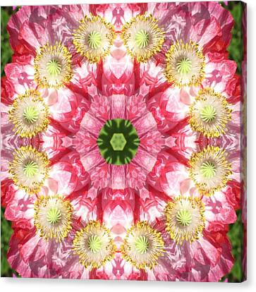 Canvas Print featuring the digital art Poppy Explosion by Trina Stephenson