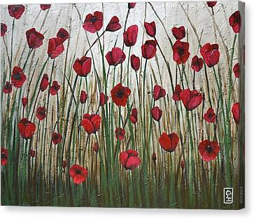 Poppy Field Canvas Print by Holly Donohoe