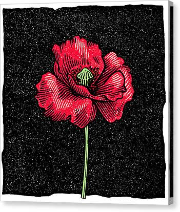 Linocut Canvas Print - Poppy Flower, Woodcut by Gary Hincks