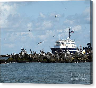 Canvas Print featuring the photograph Port Fourchon Life by Luana K Perez