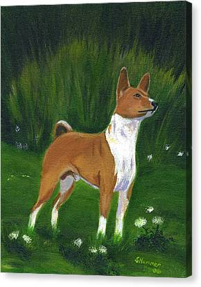 Portrait Of A Basenji Canvas Print by Sharon Nummer