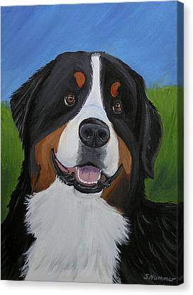 Portrait Of A Bernese Mountain Dog Canvas Print by Sharon Nummer